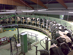 Dairy Gas conversions Idaho